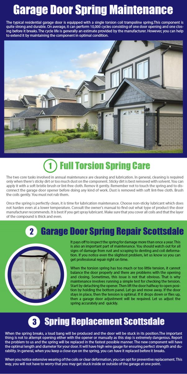 Garage Door Repair Scottsdale Infographic